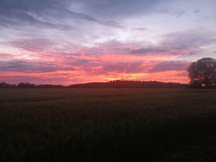 Warum uns der Sonnenuntergang manches mal besonders roterscheint!